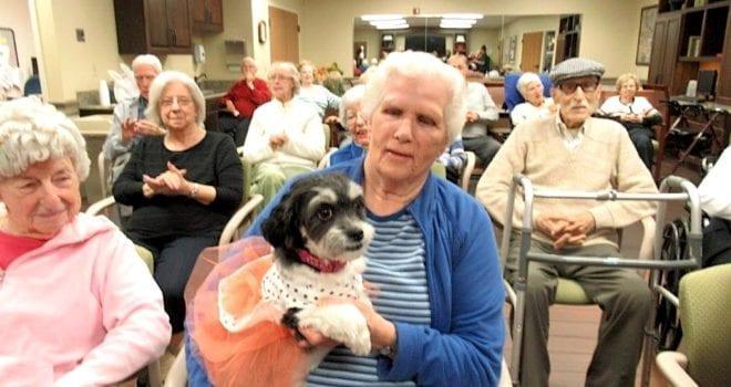 The Inn at Belden Village celebrates Zoey the dog's birthday